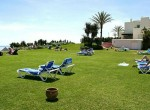 10.Grass by the swimming-pool and the beach
